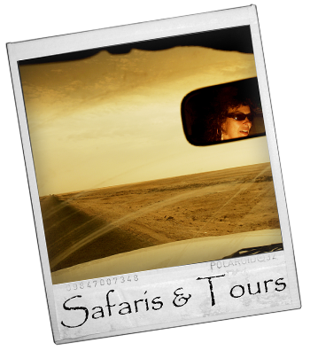 Angolan Safaris and Tours